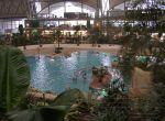 Tropikalny park