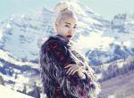 moda zima 2014 - trendy, zdjęcie 8