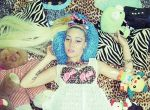 Cotton Candy Punk