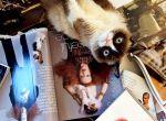 Grumpy Cat w Vogue, zdjęcie 4