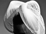 Gabriela Ligenza jesień / zima 2014, kapelusze 3D, zdjęcie 9