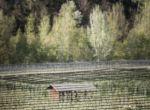 Modne miejsca: Sauna w Dolinie Passiria, zdjęcie 1