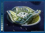 Struktura Lilypad opiera się na symbiozie najnowszych technologii z roślinnością