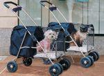 Niebieskie wózki dla samców? różowe dla samic?