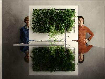 Florama – praktyczny design dla zielonych