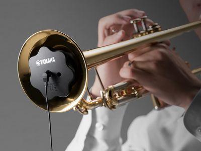 Silent Brass