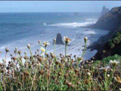 Teneryfa- wyspa na chłodne zimowe dni