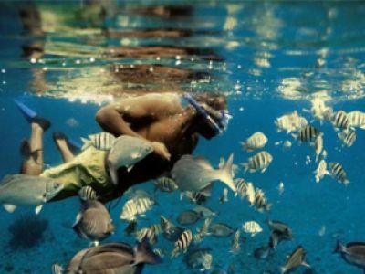 Snorkling- nowa forma aktywnego wypoczynku