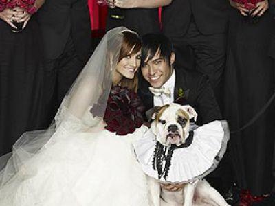 Najbardziej gorące śluby roku 2008