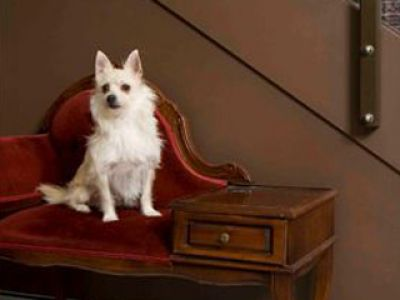 Paws Paws Dog Hotel- Sydney