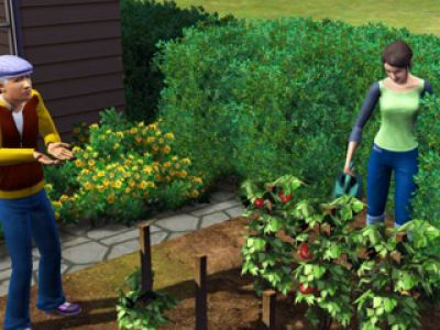 Fenomen The Sims 3