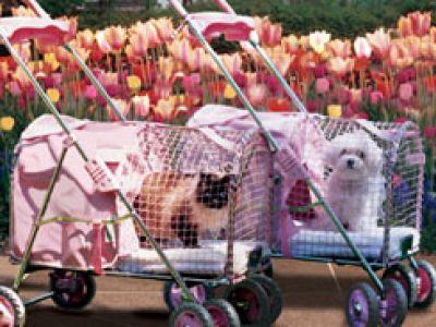 Wózki dla psów i kotów
