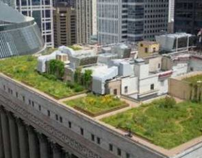 Pracowniczy ogródek na dachu