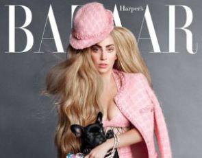 Lady Gaga w Harper