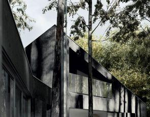 Designerski dom w lesie
