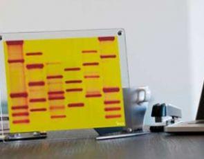 Walentynkowe DNA- prezent idealny
